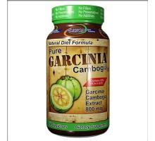Fusión dieta sistemas puro Garcinia Cambogia (60 Veg cápsulas)