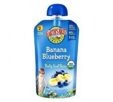 Mejor bebé alimentos arándanos Banana de la tierra (12 x 4 Oz)