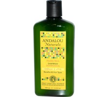 Andalou Naturals Healthy Shine Shampoo girasol y cítrico (1x11.5 Oz)