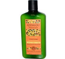 Andalou Naturals humedad rico dulce naranja y Shampoo de argán (1x11.5 Oz)