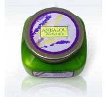 Andalou Naturals lavanda Shea Body Butter (1 x 8 Oz)