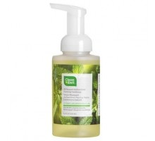 Cleanwell Spearmint Lime Foam Hand Wash (1x9.5 Oz)