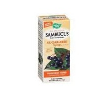 Nature's Way Sambucus Kids Syrup (1x4 Oz)